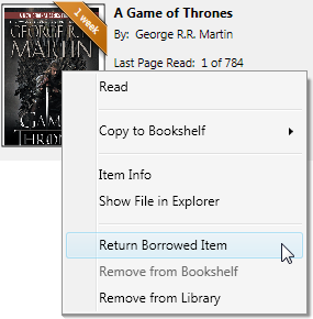 Screenshot highlighting the Return Borrowed Item option in the right-click menu