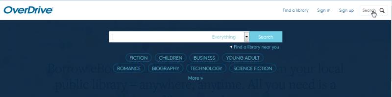 Screenshot of the search bar