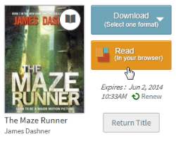 Screenshot of the read in browser button for a borrowed eBook