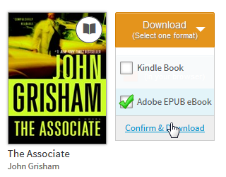 Screenshot of the download options for a borrowed eBook