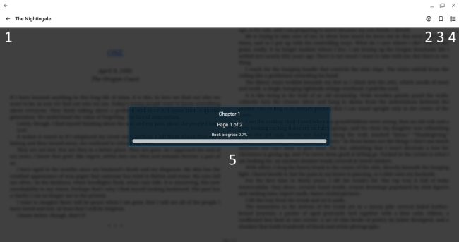 The reader options. See instructions below.