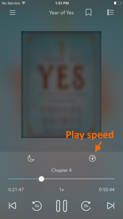 Play speed icon. See instructions above.