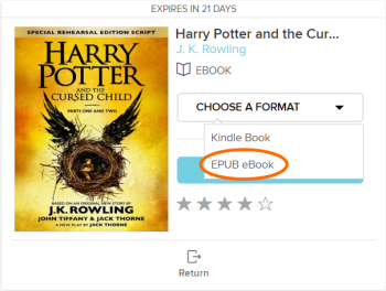 The EPUB format for a borrowed eBook. See instructions above.