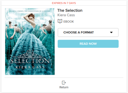 eBook on the Checkouts page
